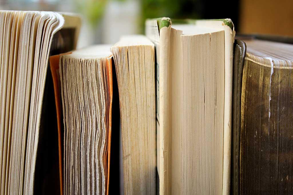 Biblioteca MLP